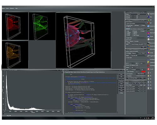 Gataca Systems software