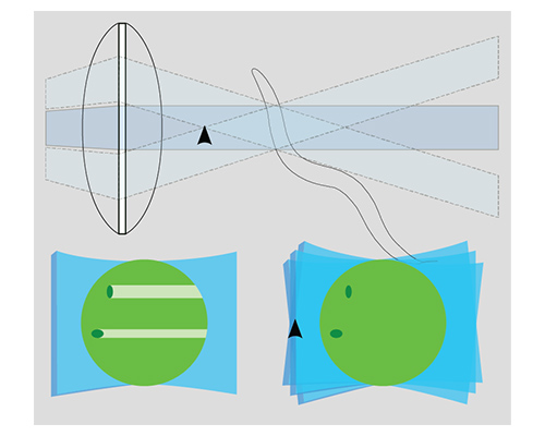 Light Sheet lens diagram